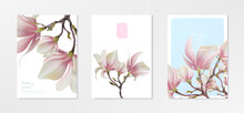 Magnolia Flower, Vector Pink Blossom. Sakura Floral Design. 3d Minimal Illustration, Rose Bloom.