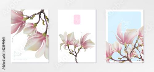Fotografie, Obraz Magnolia flower, vector pink blossom