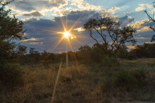Stunning Sunset Of The Sun Rays Breaking Through The Clouds In The African Bushveld, Greater Kruger.
