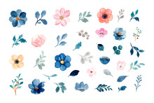 Watercolor Floral And Leaves Element Collection