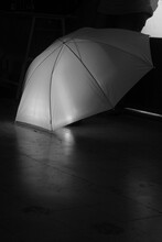 Paraguas Umbrella