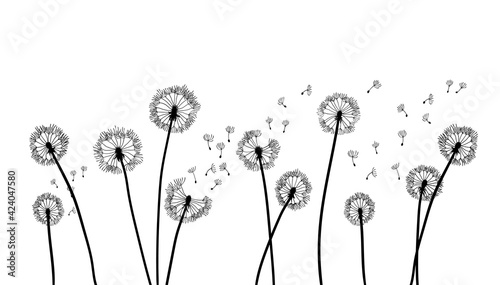 Canvas-taulu Dandelion time background