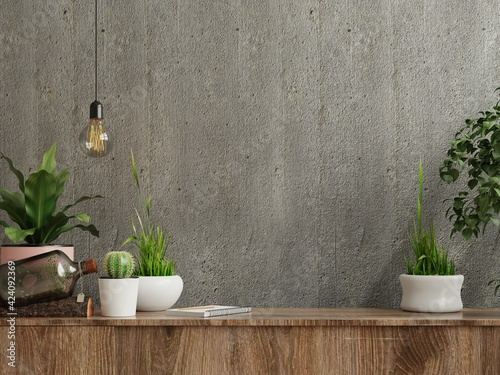 Fototapeta Mockup concrete wall with ornamental plants and decoration item on cabinet wooden. obraz