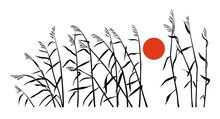 Reed And Sunset In A Minimalism Style. Horizontal Vector Drawing.
