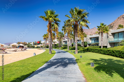 Fotografia Palm trees in alley of beautiful beach in tropical resort with sunbeds and umbre