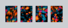 Set Of Vector Poster Templates In Dark Animal Colors