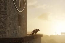 Turmfalke Auf Dem Kirchturm Im Abendlicht. 3D Rendering