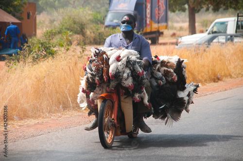 Burkina Faso Chicken ride