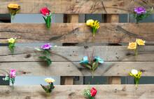 Flores Artificiais Coloridas Na Cerca De Madeira