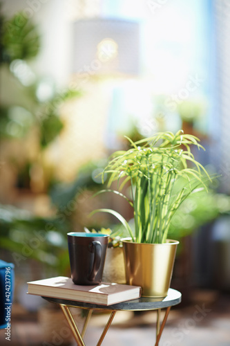 Obraz Book, cup, and potted plant on small table at home in sunny day - fototapety do salonu