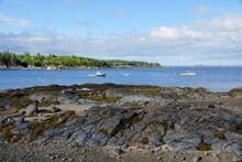 Seal Cove On Mt Desert Island In Maine USA