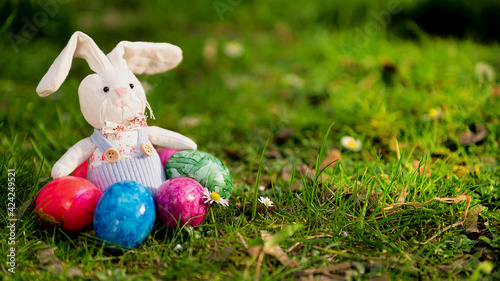 Fototapeta Easter bunny sitting in the grass.  obraz