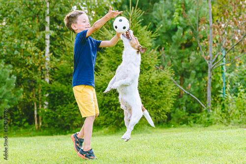 Fototapeta Kid boy exercise his dog outside with small football ball obraz