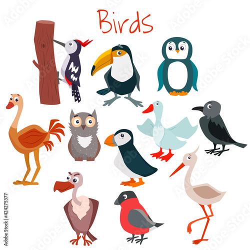 Fototapeta premium Set of cute cartoon birds. Vector flat illustration.