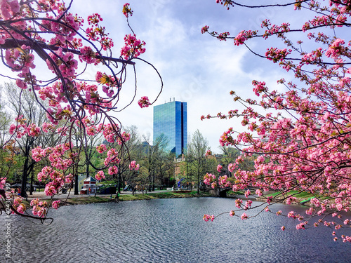 Fotografering Boston in the Spring