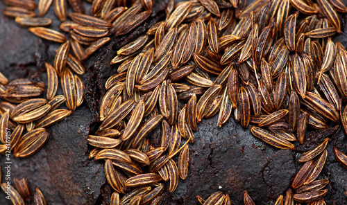 Fotografie, Obraz Cumin seeds on rye bread as background.