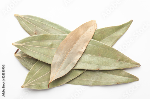 Fotografija Macro close-up of Organic Indian bay leaf (Cinnamomum tamala)  tezpatta  on white background