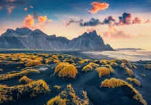 Beautiful Autumn Scenery. Amazing View From Flying Drone Of Black Sand Dunes On Stokksnes Cape With Vestrahorn (Batman Mountain) On Background. Impressive Morning Scene Of Iceland, Europe.