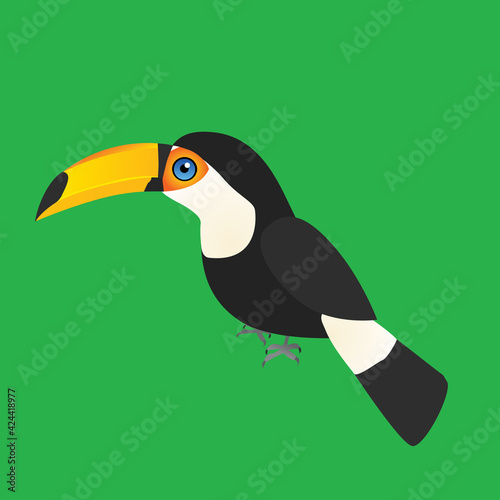 Fototapeta premium An illustration of a toco toucan. The single bird is placed on a green background.
