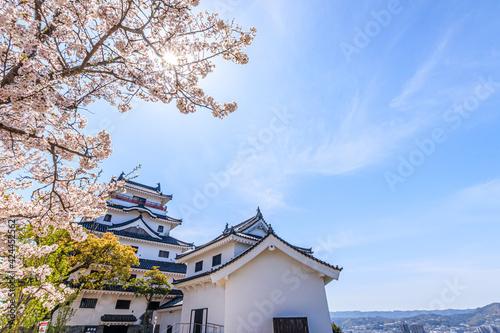 Tableau sur Toile 桜と唐津城 佐賀県唐津市 Cherry Blossoms and Karatsu castle Saga-ken Karatsu city