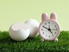 Easter Time Concept. Little Pink Rabbit Alarm Clock And White Eggs On The Green Grass Background. Countdown To The Holiday. The Hatched Egg. Space For Text.