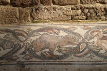 Fragments Of Ancient Religious Mosaics On The Ruins Of A Church In The Middle Of The 6th Century AD In Northern Israel
