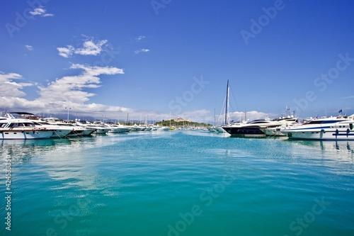 Obraz na plátně Wight yachts and speed boats at harbor
