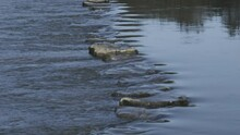 Stepping Stones On The River Ewenny At Ogmore Castle Ogmore South Wales 4K