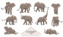 Set Of Big Gray African Elephants Biggest Earth Mammal Cartoon Animal Design Vector Illustration On White Background