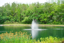 A Pond And Geyser In A Community Of Florida