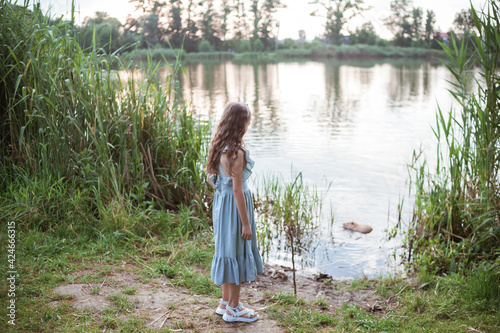 Obraz na plátne A girl in a long blue dress stands on the shore of the lake and looks at nutria in the water
