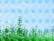 canvas print picture - Muster – Fruehling – Hintergrund