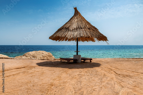 Parasols in beautiful coral sunny beach in Red Sea, Egypt,  Africa.