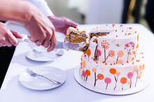Wedding Cake In Two Tiers With Autumn Pictures