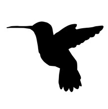 Flying Hummingbird Silhouette
