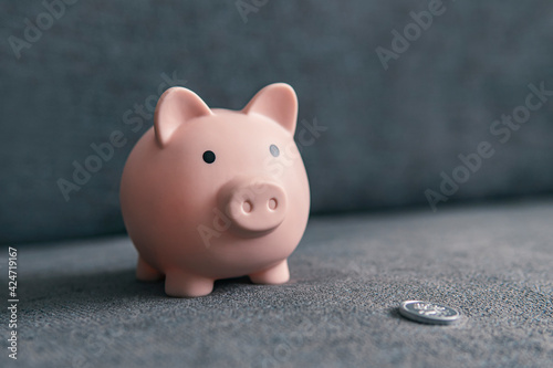 Canvas Print piggy bank in the form of pig and a silver coin on a dark background with copy s