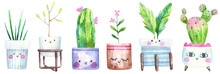 Set Of Home Plants, Succulents, House Tree, Cacti In A Flowerpot With Eyes, Cute Illustration