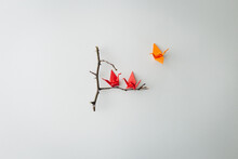 Three Little Origami Birds On Minimal Falt Lay Branch Tree