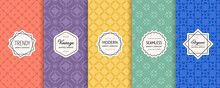 Vector Geometric Seamless Patterns Collection. Set Of Bright Colorful Background Swatches With Modern Minimal Labels. Cute Abstract Floral Ornament Textures. Orange, Purple, Yellow, Green, Blue Color