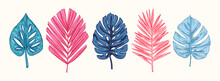 Collection Of Blue And Pink Tropical Leaves And Plants Isolated On White Background. Vector Hand Drawn Sketch Botanical Illustration. Highly Detailed Plant Collection. Palm Leaves. Exotic. Vintage