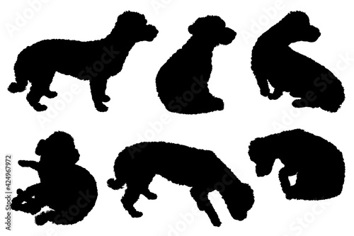 Fotografering Collection of bichon maltese dogs silhouettes isolated on white