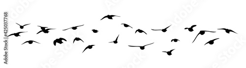 Tableau sur Toile A flock of flying birds. Vector illustration
