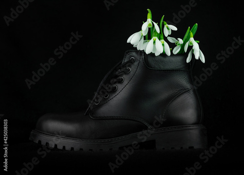 Canvas White snowdrops or Galanthus flowers bouquet in leather boot close-up on black background