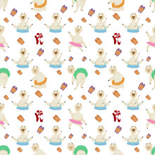 Funny Pattern With Cutie Hot Lamas Ballet Dancers Weared In  Blue, Orange, Purple And Green Skirts