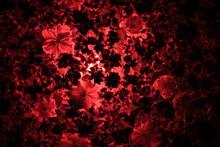 美しいカラフルな花
