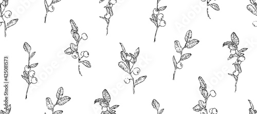Fotografija Hand drawn blueberry branches with leaves and berries seamless pattern