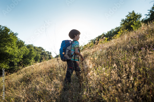 Fotografie, Obraz A boy with a backpack walks in the meadow
