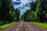 Fototapeta Na ścianę - leśna droga