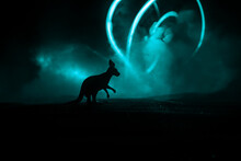Kangaroo Miniature Standing At Foggy Night. Creative Table Decoration With Colorful Backlight With Fog.