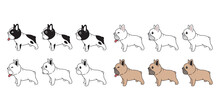 Dog Vector French Bulldog Icon Puppy Pet Breed Paw Character Cartoon Symbol Scarf Doodle Illustration Design